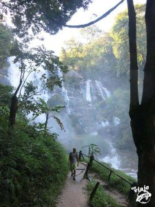 Trekking por la selva de Chiang Mai, Tailandia.