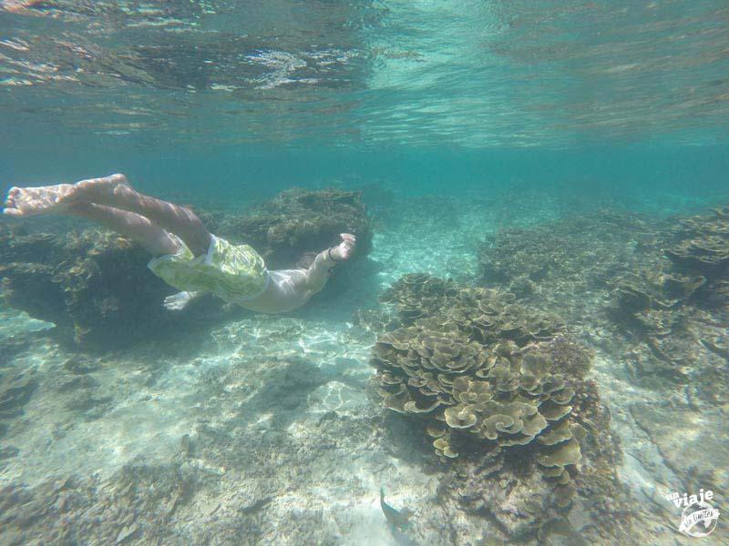 Snorkel en el paraíso.