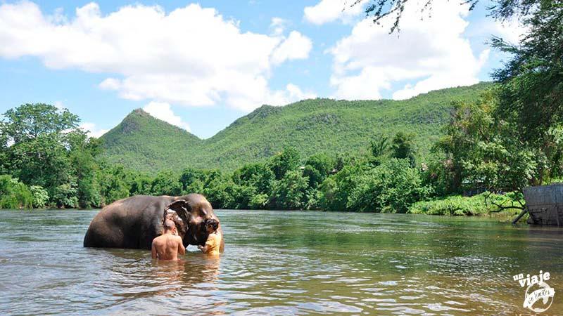 Baño con elefantes en Tailandia