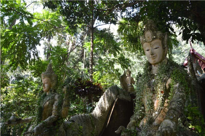 Trekking de los monjes, Chiang Mai