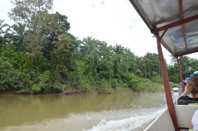 Cómo ir de Kuala Lumpur a Taman Negara